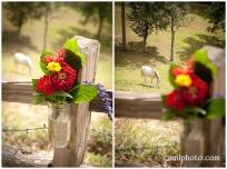 camiphoto_asheville_wedding_0001