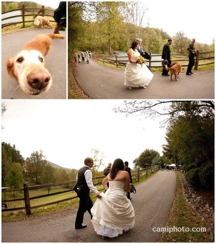 camiphoto_asheville_wedding_0026