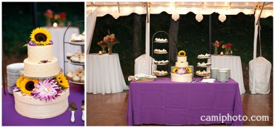 camiphoto_asheville_wedding_0034