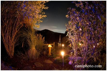 camiphoto_asheville_wedding_0045