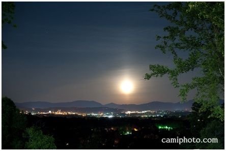 camiphoto_crest_center_0042