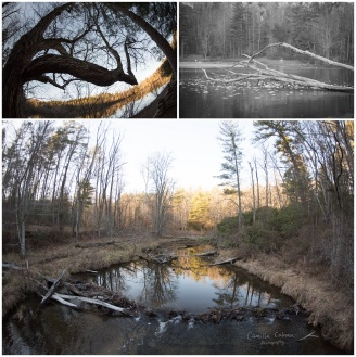 bent_creek_lake_powhatan_0006